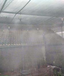 Hệ thống tưới phun sương được lắp đặt tại Vườn Lan Thực Hà - Đồng Nhân - Đông La- Hà Nội